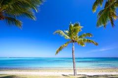 Praia do paraíso Fotografia de Stock