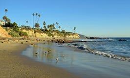 Praia do piquenique abaixo do parque situado no Laguna Beach, Califórnia de Heisler Imagens de Stock