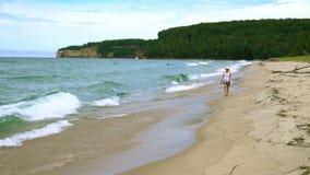 Praia do ponto da areia vídeos de arquivo