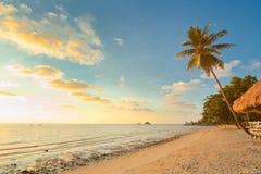 Praia do por do sol com palmeiras e bungalow Fotografia de Stock Royalty Free