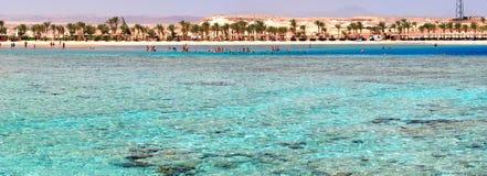 Praia do recife coral imagem de stock
