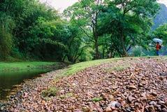 Praia do rio Fotos de Stock
