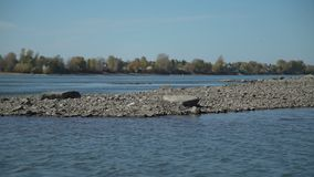 Praia do rio e da pedra perto da vila vídeos de arquivo