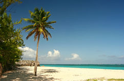 Praia do senhor de Sam Fotografia de Stock Royalty Free