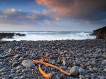 Praia dos seixos da lava fotografia de stock
