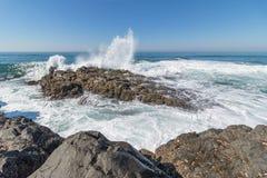 Praia dos surfistas Fotografia de Stock