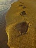 Pegadas na praia durante o por do sol Imagem de Stock