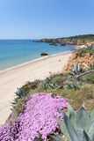 Praia doVau Stockfotografie