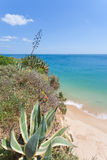 Praia doVau Royalty Free Stock Photo