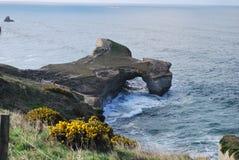 Praia Dunedin do túnel, Nova Zelândia imagem de stock royalty free