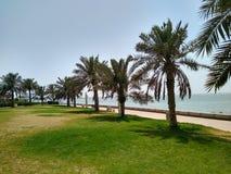 A praia e as palmas sobre perto do golfe árabe do mar imagens de stock royalty free