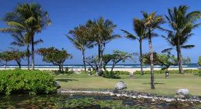 praia e azul Fotos de Stock