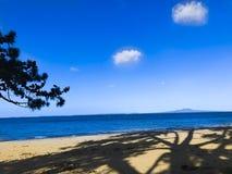 Praia e céu azul com sombra das árvores fotografia de stock royalty free