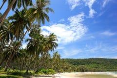 Praia e céu tropicais Imagens de Stock