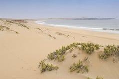 Praia e deserto Imagem de Stock Royalty Free
