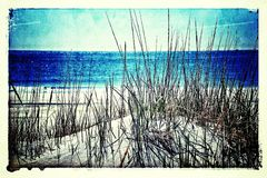 Praia e dunas Fotos de Stock