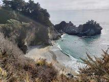 Praia e floresta fotos de stock