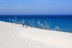 Praia e mar imagens de stock