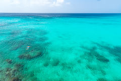 Praia e nadador de Knip imagem de stock royalty free