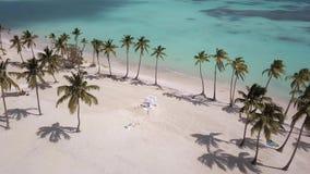 Praia e o mar de uma altura vídeos de arquivo
