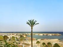 Praia e palmas em Villajoyosa, Espanha Villajoyosa é ficado situado aproximadamente 20 quilômetros ao sul de Benidorm Fotografia de Stock