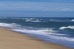 Praia e ressaca do bacalhau de cabo Imagem de Stock Royalty Free