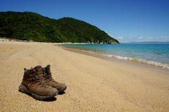 Praia em Abel Tasman National Park em Nova Zelândia Fotografia de Stock
