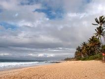 Praia em Banzai Pipeline fotos de stock