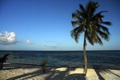 Praia em belize Fotografia de Stock