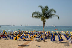 Praia em Cannes, France Imagens de Stock Royalty Free