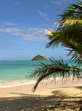 Praia em Havaí imagens de stock