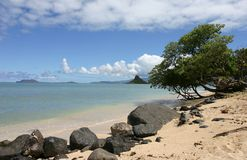 Praia em Havaí Fotos de Stock Royalty Free