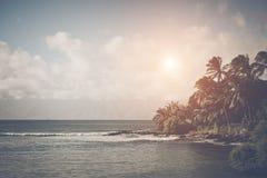 Praia em Havaí Fotografia de Stock Royalty Free