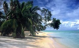 Praia em Ile Sainte Marie, Madadascar Foto de Stock