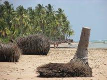 Praia stock image