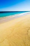 Praia em Maurícias Fotos de Stock