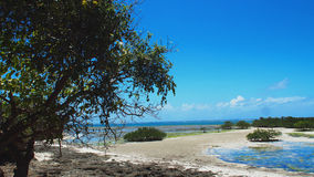 Praia em Mtwapa Foto de Stock