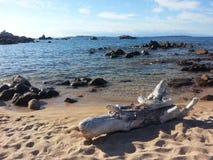 Praia em Sardinia fotos de stock royalty free
