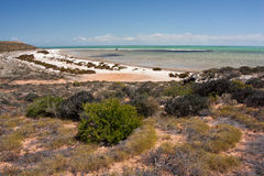 Praia em Sharkbay Fotos de Stock