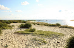 Praia em Snogebaek, Bornholm, Dinamarca fotos de stock royalty free