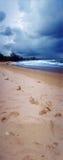 Praia em um dia nebuloso Imagens de Stock