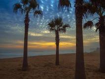 Praia em Vina del Mar Fotos de Stock Royalty Free
