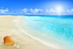 Praia ensolarada imagens de stock