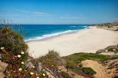 Praia ensolarada abandonada Imagens de Stock