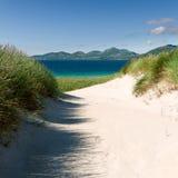Praia ensolarada com dunas de areia, grama alta e o céu azul Fotos de Stock