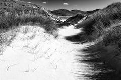 Praia ensolarada com dunas de areia, grama alta e o céu azul Fotos de Stock Royalty Free