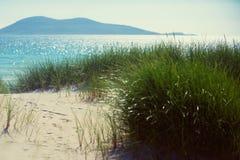 Praia ensolarada com dunas de areia, grama alta e o céu azul Imagem de Stock