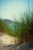 Praia ensolarada com dunas de areia, grama alta e o céu azul Foto de Stock Royalty Free