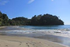 Praia ensolarada em Costa Rica Fotografia de Stock Royalty Free