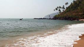 Praia ensolarada tropical video estoque